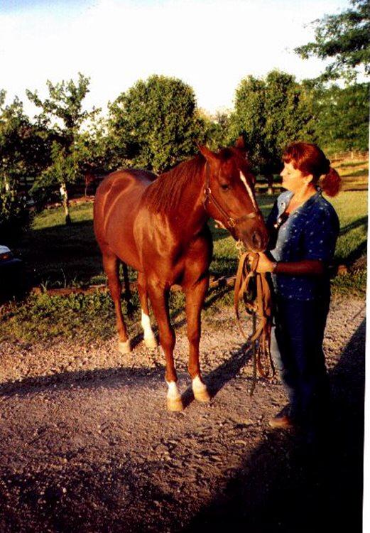 Lori's Horse